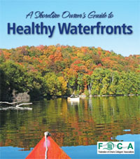 Shoreline_watershed_cover