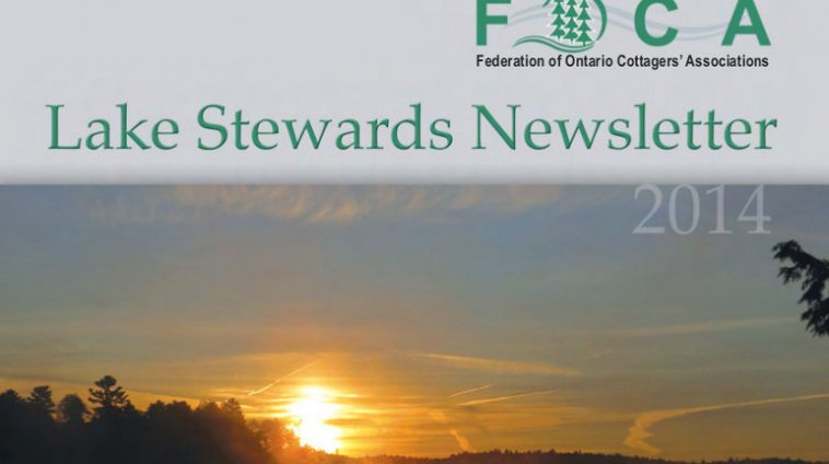 FOCA LS Newsletter COVER for web 2014