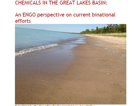CELA Report Toxic Chemicals in Great Lakes Basin June 2015