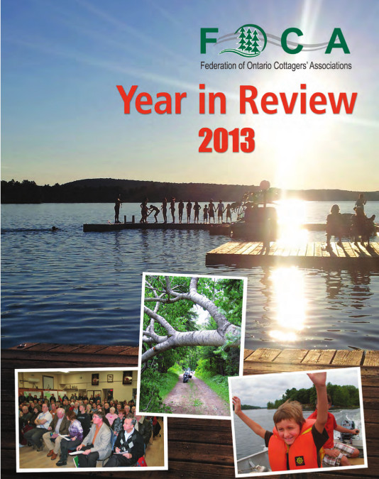FOCA Year in Review 2013 cover