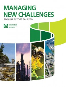 Managing new challenges cover 2014