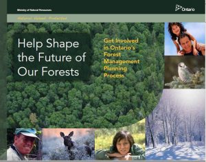 cover of MNRF publication: Help Shape the Future of Our Forests