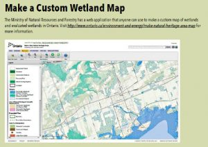 MNRF Custom Wetland Map