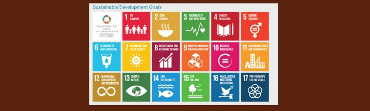 Banner UN Sustainable Development Goals