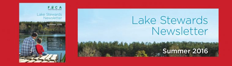 image: cover of 2016 Lake Stewards Newsletter