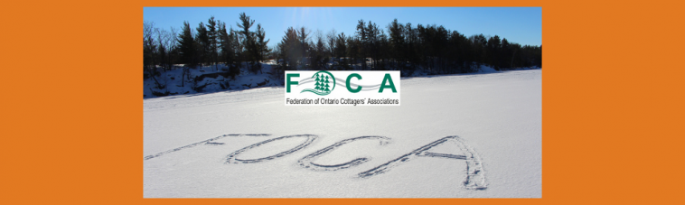 web banner FOCA in snow 2017