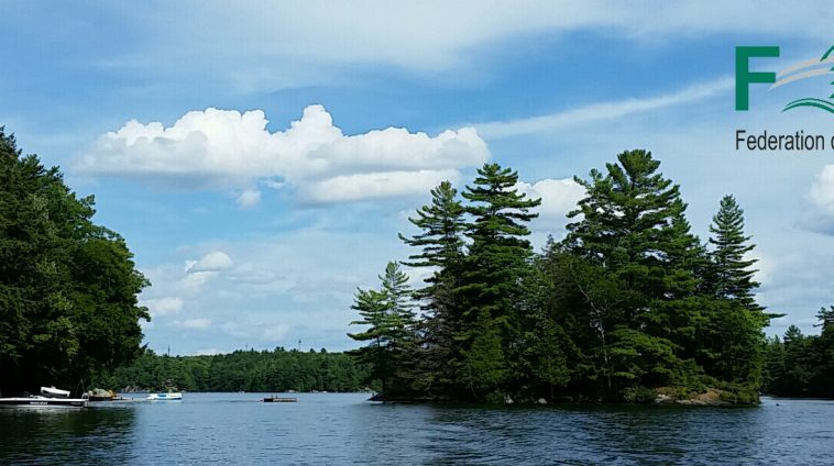 Banner Crane Lake shoreline boatride ML 2016