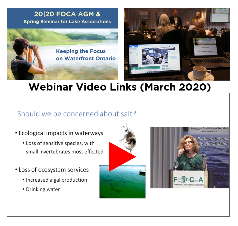 image depicting the video resources from the FOCA AGM 2020